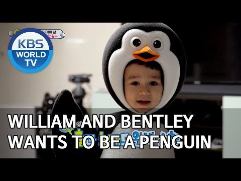 William And Bentley Wants To Be A Penguin[The Return Of Superman/2020.01.19]