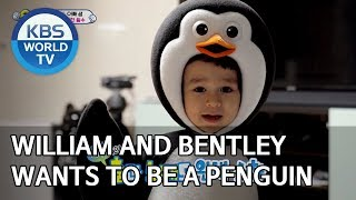 William and Bentley wants to be a penguin [The Return of Superman/2020.01.19]