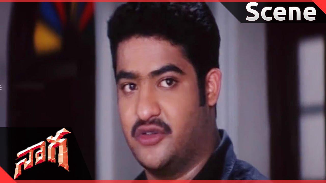 Naaga Movie Jrntr Court Scene Jrntr Sadhajennifer