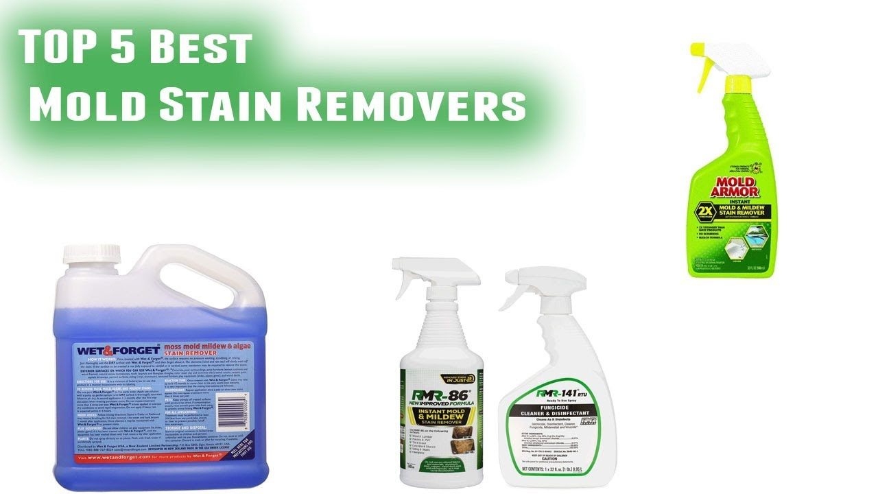 Best Mold Stain Removers 2019