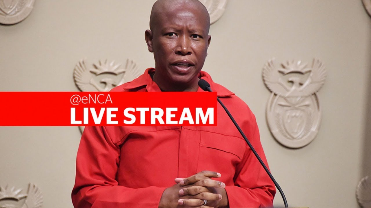 Malema and Ndlozi back in court