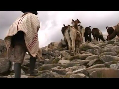 Ancient Incan Road System Named World Heritage Site