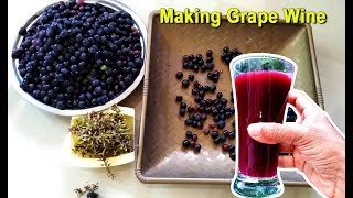 Download lagu How To Make Grape Wine at Home | Homemade Red Wine Recipe | Craft Village
