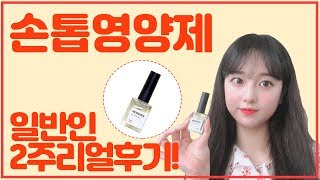 손톱영양제 일반인 2주리얼후기!