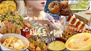 +5kg 제주도이사&먹방vlog🌴라이스페이퍼떡볶이만들기,명란로제떡볶이,휴게소음식,밀면,식품관빵쇼핑,맥도날드,들깨수제비,비파티세리,메종엠오,푸딩,치킨/제주도민 추천맛집,빵먹방