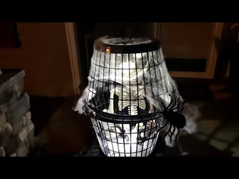 Dollar Tree DIY Last Minute Halloween Decorations Skeleton In A Cage