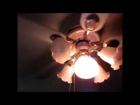 Hampton Bay Princetons (and Carriage House) ceiling fans during daylight