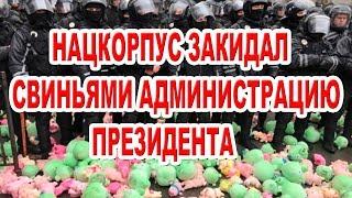 Нацкорпус закидал свиньями Администрацию Президент...