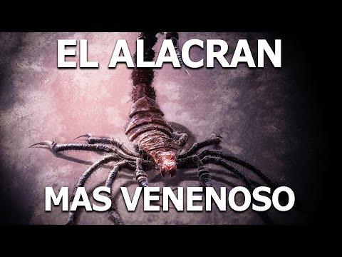 La Leyenda De El Alacran De Durango  VENENO MORTAL