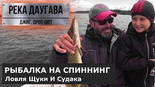 Рыбалка на джиг и дроп-шот. Река Даугава. Щука, судак.