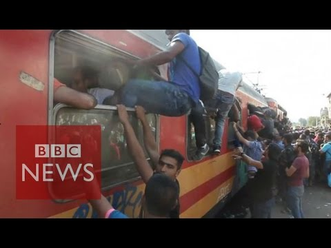 Macedonia: Migrants desperate for a train into the EU - BBC News