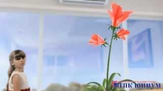 Кондиционеры Toshiba(Продажа и монтаж кондиционеров Тошиба от ТПК ЮНИУМ во Владимире www.tpk-unium.ru., 2015-03-08T20:49:52.000Z)