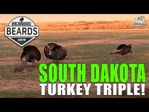 SOUTH DAKOTA TURKEY HUNTING TRIPLE!