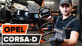 Kako zamenjati Blažilnik AUDI A8 (4H_) - priročnik