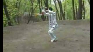Yang shi tai chi sword 42 form by Dimk