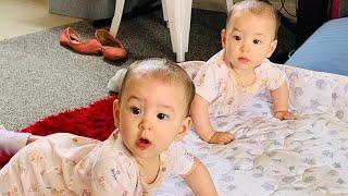 Cutest identical twins baby playing || em bé sinh đôi dễ thương chơi với nhau