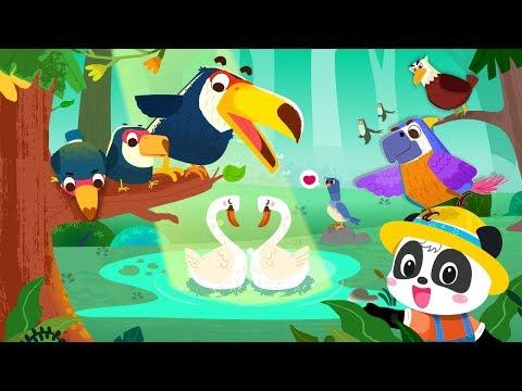 Baby Panda's Bird for PC: Download on Windows 10/8/7