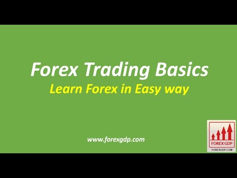 Forex Trading Basics: Forex Trading for Beginners