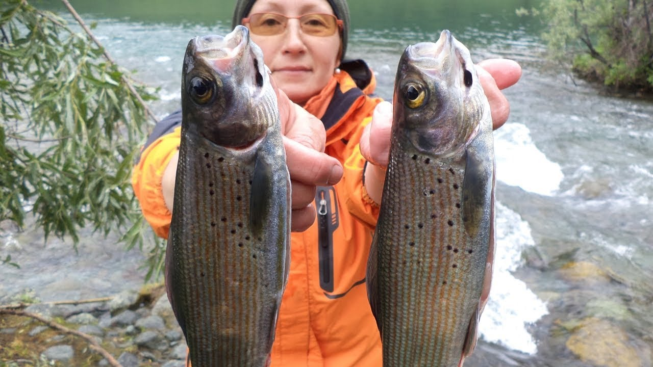 Сливаем Самые Рыбные Места Алтая Рыбалка