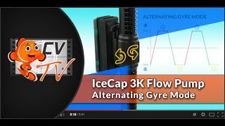 IceCap Gyre 3K: Alternating Gyre Mode