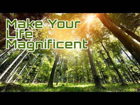 Dare to Make Your Life Magnificent    Vibravision®