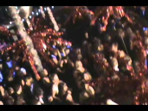 Kerstgale bona marienpoel 2010