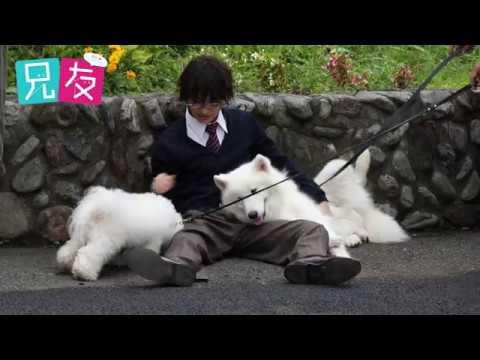 『兄友』松岡広大メイキング映像