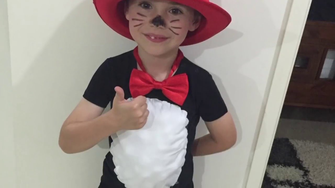Basichomemade Cat In The Hat Costume Youtube