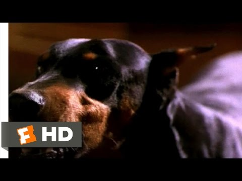Crossworlds (1997) - Let's Watch the World Go to Hell Scene (4/10) | Movieclips