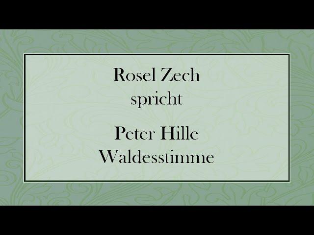 Waldesstimme Von Hille Gedichte Hausaufgaben Referate