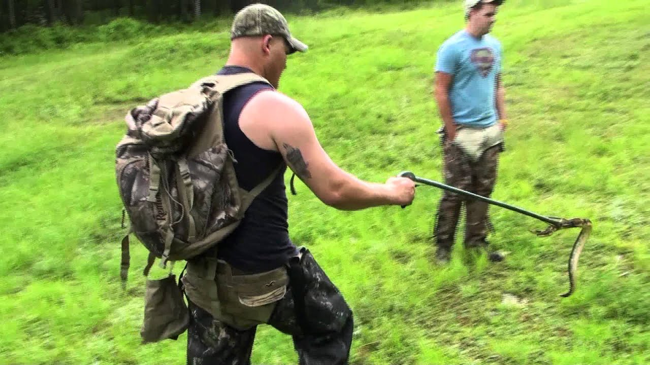 Timber rattlesnake hunting pa 2011 3 youtube for Pa out of state fishing license