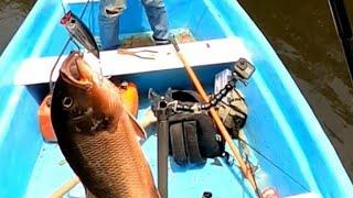 Otra pesca en MANGLAR.