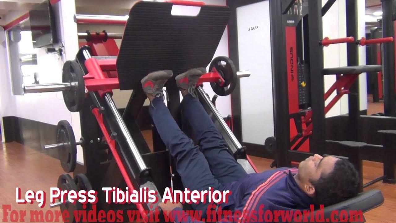 Leg Press Tibialis Anterior by expert Mayur Deshpande (ACSM & ACE ...