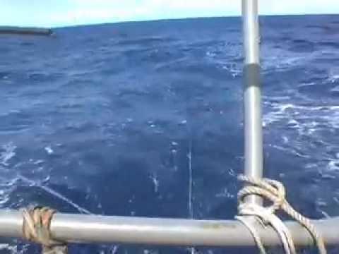 South Atlantic Sailing - 1000 Days Non Stop at Sea
