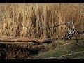Хитрая китайская удочка,которая ловит рыбу сама,охотится на щуку,монтаж убийца щуки