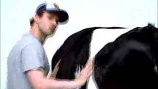 "Original ""Cow Shake"" commercial"