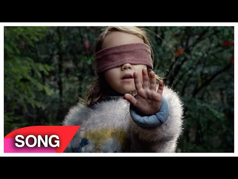 "Bird Box SONG (""Sweet But Psycho"") PARODY"