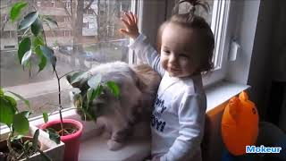 Funny Animals 🐶🦄🦋 Trolling Babies 👶 and Kids 👧👦面白い動物トローリング赤ちゃんのコンパイル