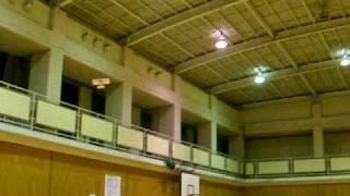 レトロウイングスの体育館での飛行.
