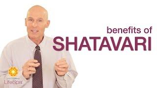 Benefits of Shatavari | John Douillard's LifeSpa thumbnail