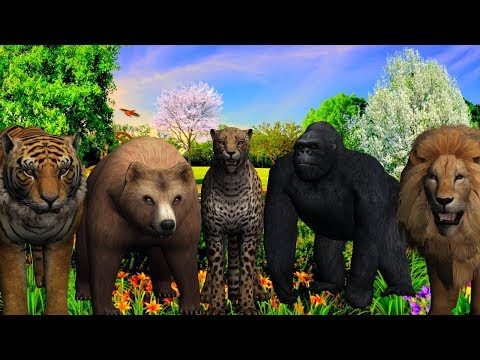 Wild Animals Finger Family song For Children || 3D Animation Rhymes For Kids thumbnail