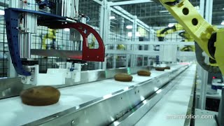 Robotic Cake Cutting & Tray Packing System - Smart Motion Robotics