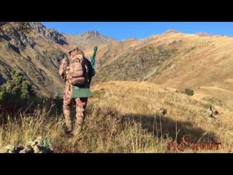 Maral Hunting In Jungarian Alatau
