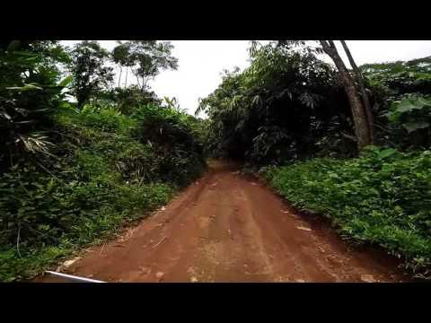 Aluva Munnar Trail