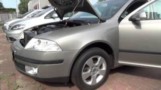 Auta z Niemiec #13/08/2015: Skoda Octavia /Oranienburg/