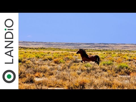 SOLD • Land In Wyoming • 160 Acres Near Rawlins, Wyoming Adjoining BLM & State Land