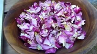 rose petals, sun dry rose petals