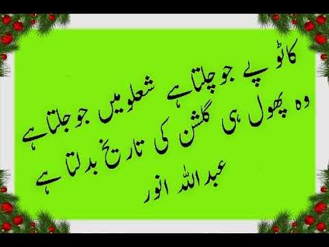 Abdullah anwar khan1