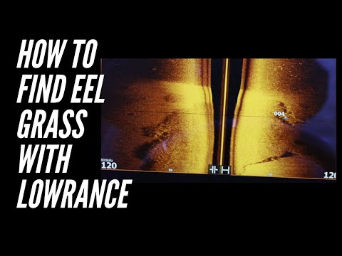 How To Find EEL GRASS On Guntersville With Lowrance CMAP And Active Imaging - HDS LIVE 16