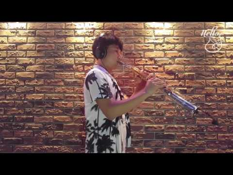 Kenny G - Over The Rainbow  - Cover Video soprano saxphone